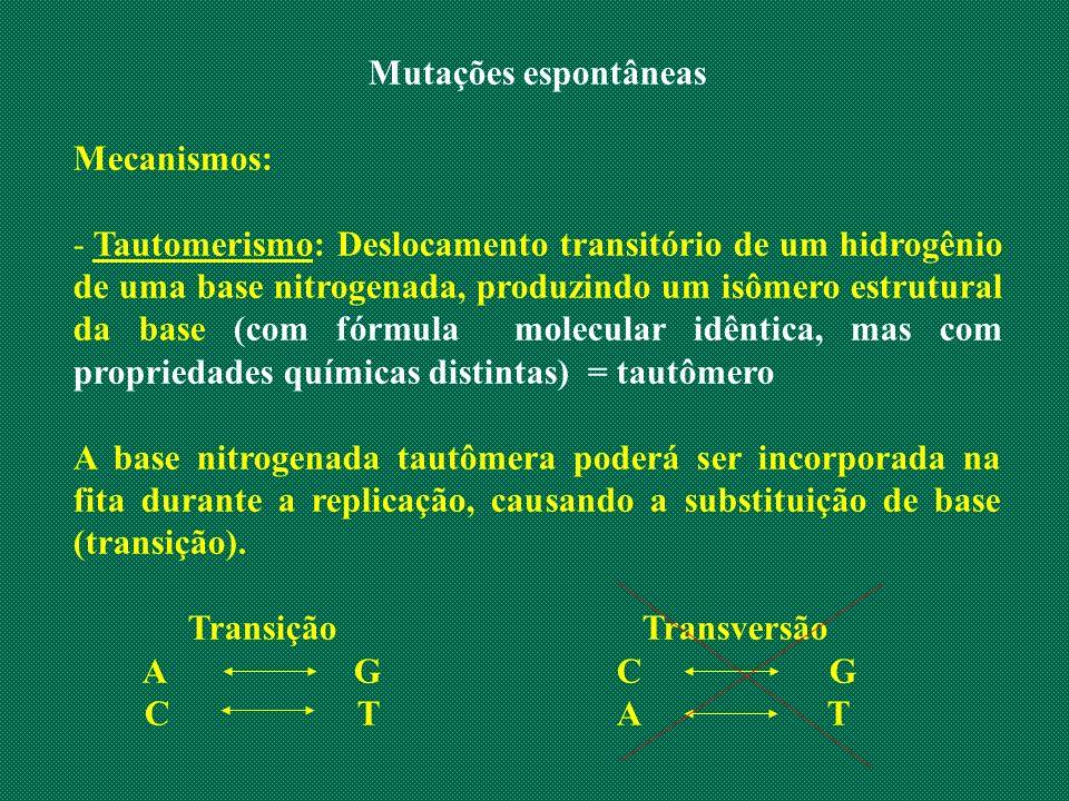 Mutações espontâneas Mecanismos: - Tautomerismo: Deslocamento transitório de um hidrogênio de uma base nitrogenada, produzindo um isômero estrutural d