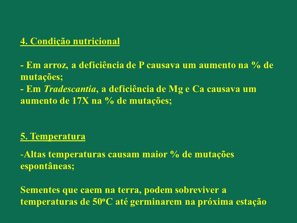 4. Condição nutricional - Em arroz, a deficiência de P causava um aumento na % de mutações; - Em Tradescantia, a deficiência de Mg e Ca causava um aum