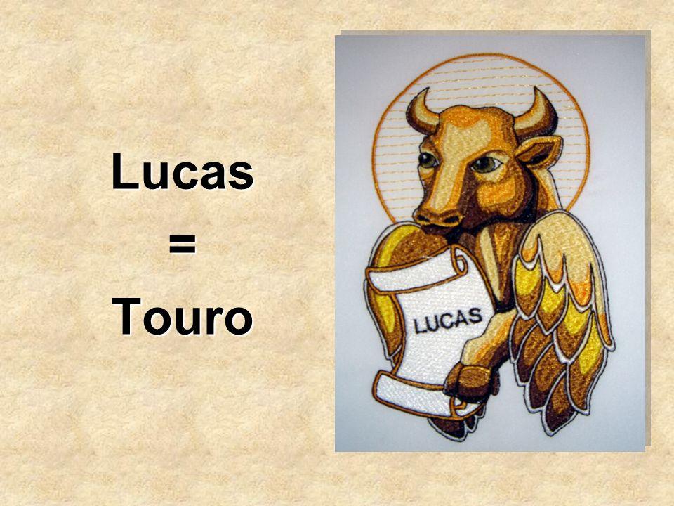Lucas=Touro