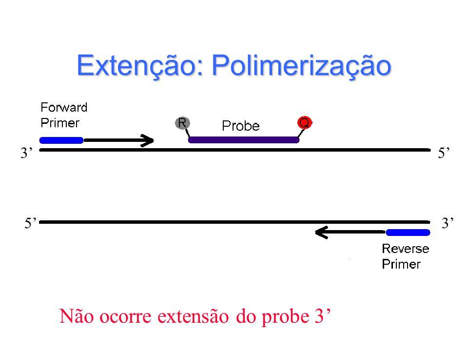 Extenção: Polimerização Não ocorre extensão do probe 3 5 53 3