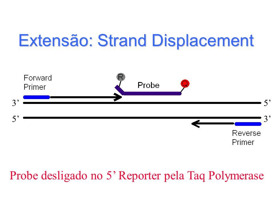 Extensão: Strand Displacement Probe desligado no 5 Reporter pela Taq Polymerase 3 35 5