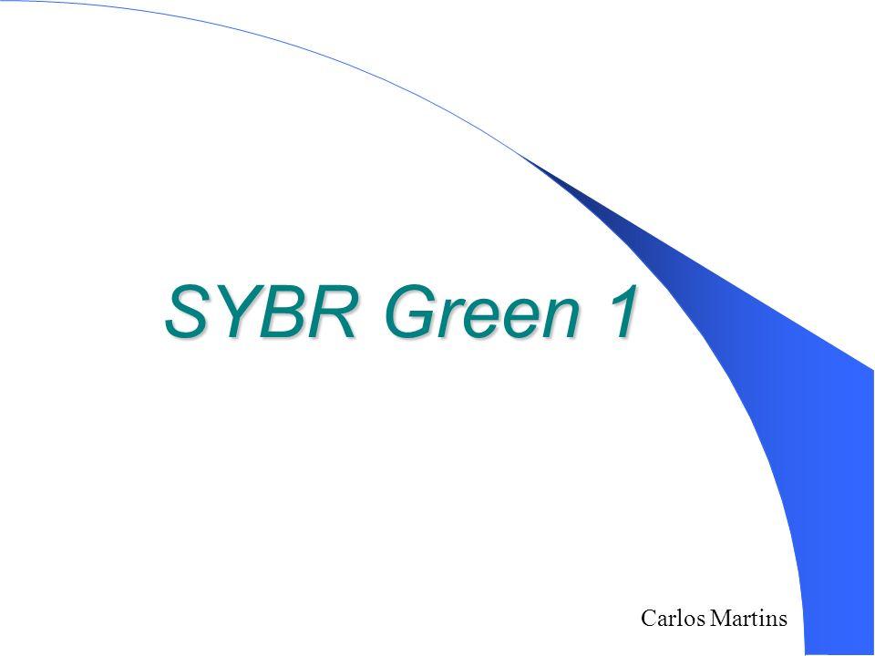 Carlos Martins 2/18/2014 SYBR Green 1