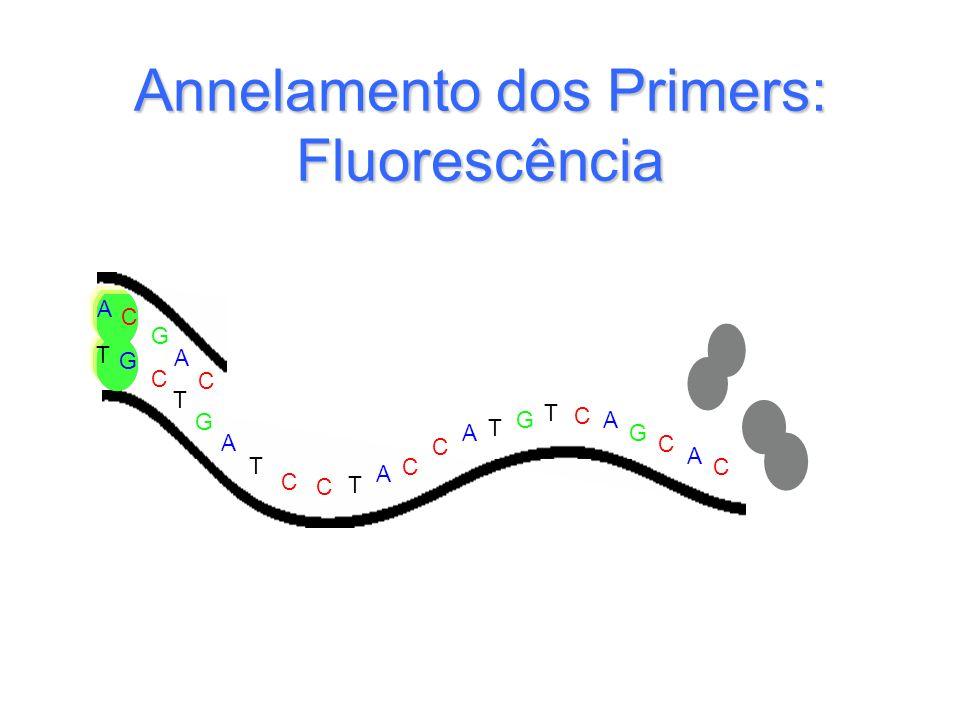 G T T T T G G C C C C C C C C A A A A A A T G C A C T G Annelamento dos Primers: Fluorescência