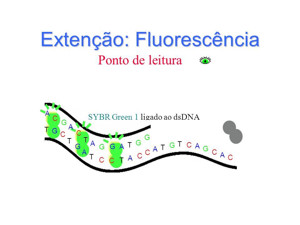 SYBR Green 1 ligado ao dsDNA G T T T G G C C C C C C C A A A G G G A C T T G A T A G C A T C G T A A Extenção: Fluorescência Ponto de leitura