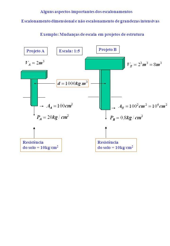 Alguns aspectos importantes dos escalonamentos Escalonamento dimensional e não escalonamento de grandezas intensivas Exemplo: Mudanças de escala em projetos de estrutura Resistência do solo = 10kg/cm 2 Projeto A Projeto B Resistência do solo = 10kg/cm 2 Escala: 1:5