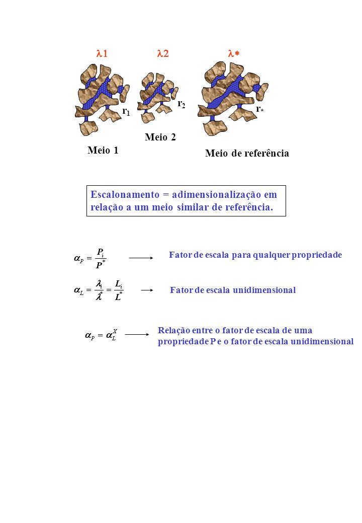 r1r1 r2r2 Meio 1 Meio 2 r*r* Meio de referência Escalonamento = adimensionalização em relação a um meio similar de referência.