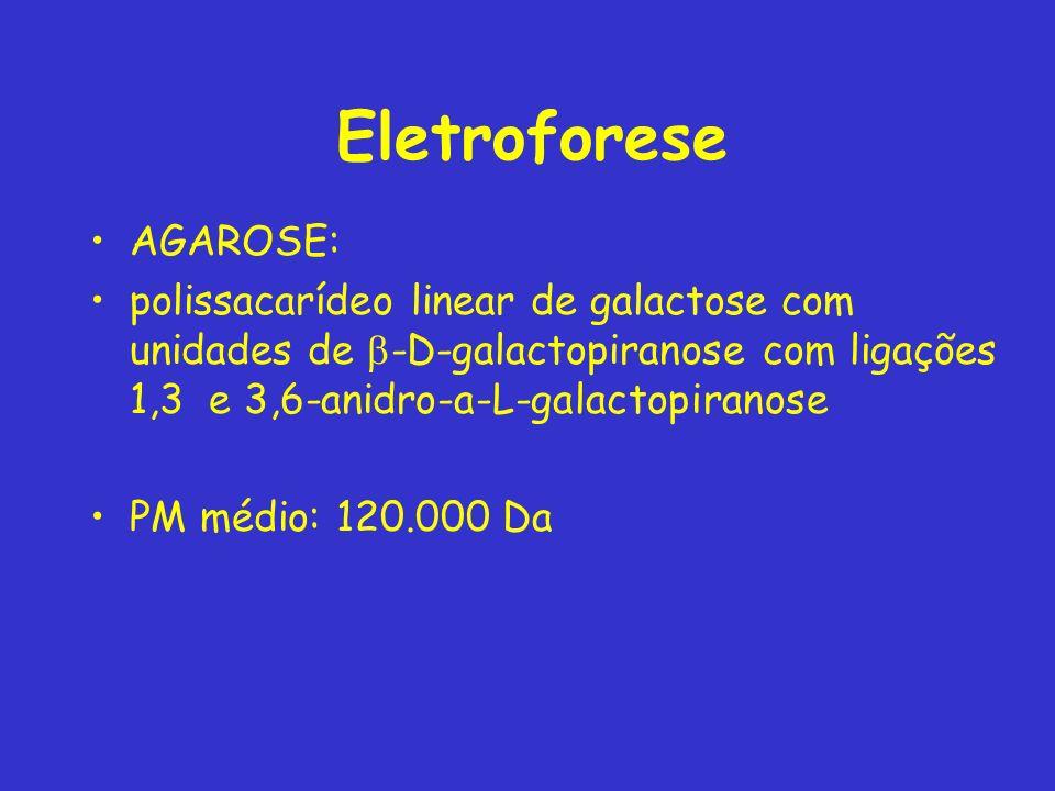 Eletroforese AGAROSE: polissacarídeo linear de galactose com unidades de -D-galactopiranose com ligações 1,3 e 3,6-anidro-a-L-galactopiranose PM médio: 120.000 Da