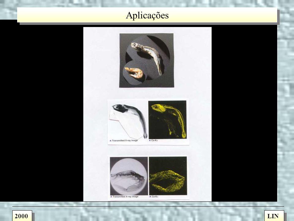 Capilares Reto Cônico Elíptico 2000LIN