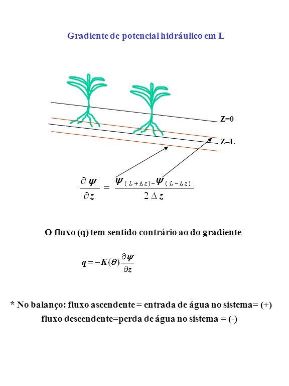 Z=0 Z=L Gradiente de potencial hidráulico em L O fluxo (q) tem sentido contrário ao do gradiente * No balanço: fluxo ascendente = entrada de água no s