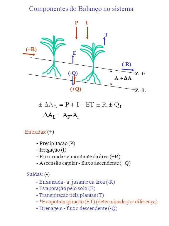 Entradas: (+) - Precipitação (P) - Irrigação (I) - Enxurrada - a montante da área (+R) - Ascensão capilar - fluxo ascendente (+Q) (+Q) PI (+R) Saídas:
