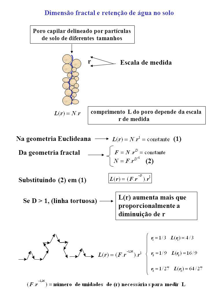 Comprimento do poro em função da escala Fazendo r = (2.R i ) = diâmetro de partículas na escala r Tomando-se em (2) um comprimento de poro L i = 2R i o número N de partículas envolvidas será N=1 (1) (2) Portanto (1) será: Como: