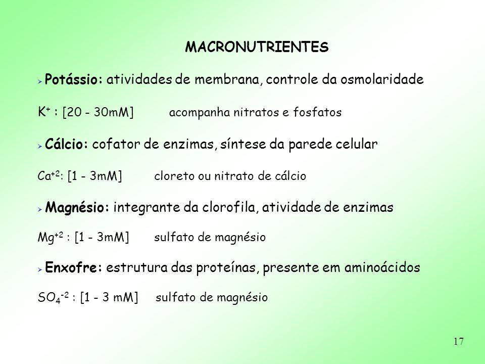 17 MACRONUTRIENTES Potássio: atividades de membrana, controle da osmolaridade K + : [20 - 30mM] acompanha nitratos e fosfatos Cálcio: cofator de enzim