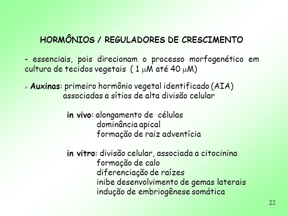 22 HORMÔNIOS / REGULADORES DE CRESCIMENTO - essenciais, pois direcionam o processo morfogenético em cultura de tecidos vegetais ( 1 M até 40 M) Auxina