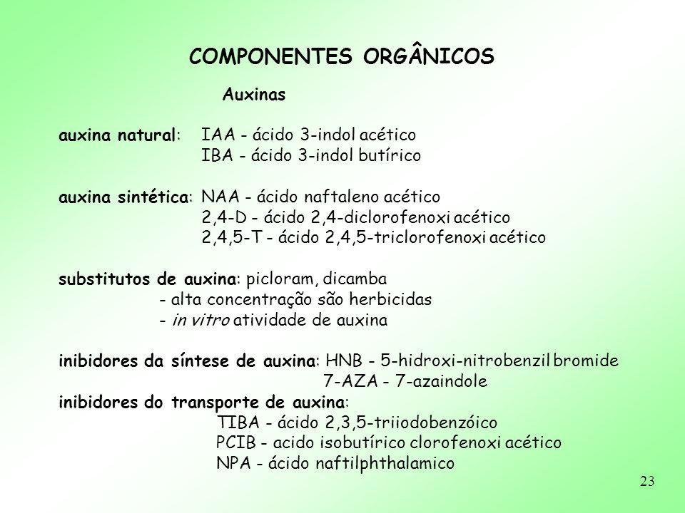 23 Auxinas auxina natural: IAA - ácido 3-indol acético IBA - ácido 3-indol butírico auxina sintética: NAA - ácido naftaleno acético 2,4-D - ácido 2,4-