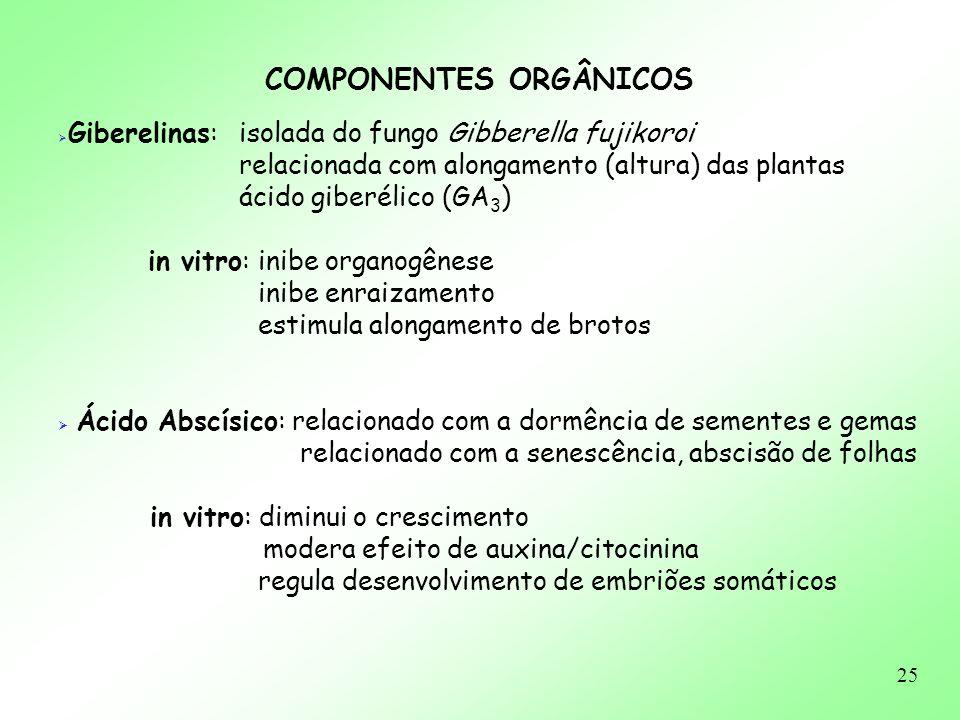 25 Giberelinas: isolada do fungo Gibberella fujikoroi relacionada com alongamento (altura) das plantas ácido giberélico (GA 3 ) in vitro: inibe organo