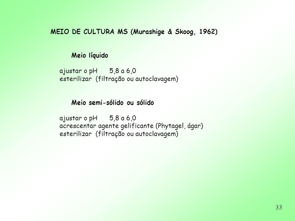 33 MEIO DE CULTURA MS (Murashige & Skoog, 1962) Meio líquido ajustar o pH 5,8 a 6,0 esterilizar (filtração ou autoclavagem) Meio semi-sólido ou sólido