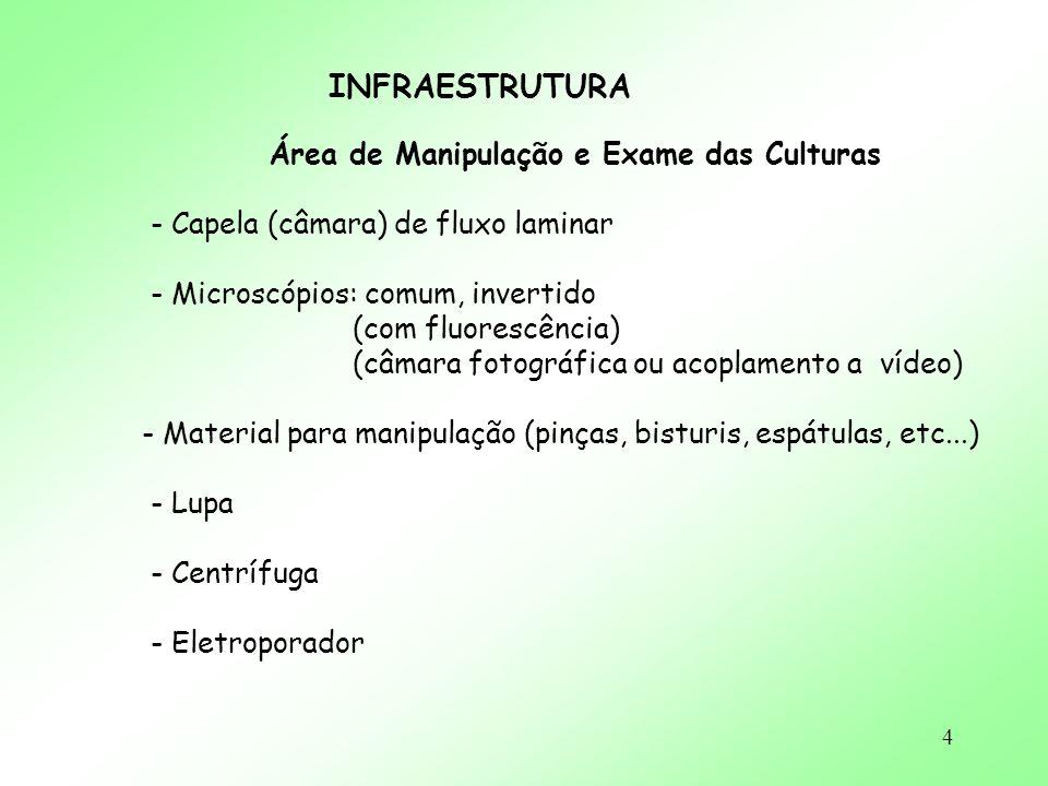 4 INFRAESTRUTURA Área de Manipulação e Exame das Culturas - Capela (câmara) de fluxo laminar - Microscópios: comum, invertido (com fluorescência) (câm