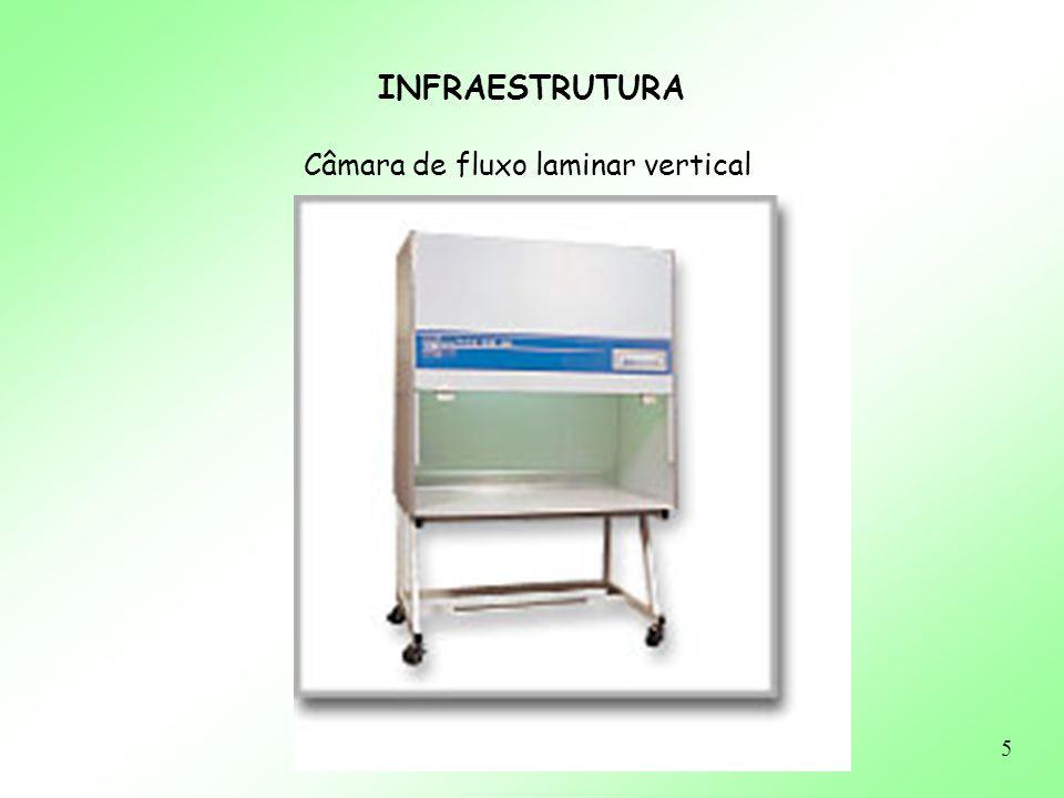 36 ASSEPSIA E ESTERILIZAÇÃO Área de Trabalho/Materiais - Esterilização de Vidraria e Material: calor seco (estufa: 140 - 180 o C/ 2 a 4h.) calor úmido (autoclave) + secagem (estufa) raios-gama: plásticos descartáveis Flambagem das pinças e bisturis durante o trabalho - Limpeza Laboratório e Vidraria álcool: balcão e capela detergente + H 2 O destilada: vidraria desinfetante: chão