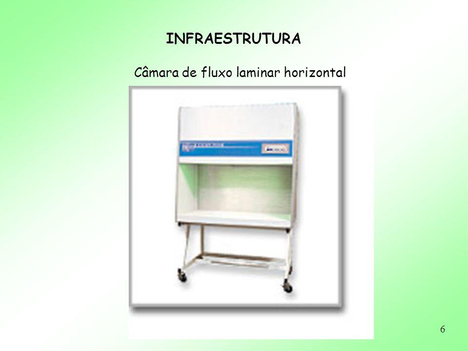 6 INFRAESTRUTURA Câmara de fluxo laminar horizontal
