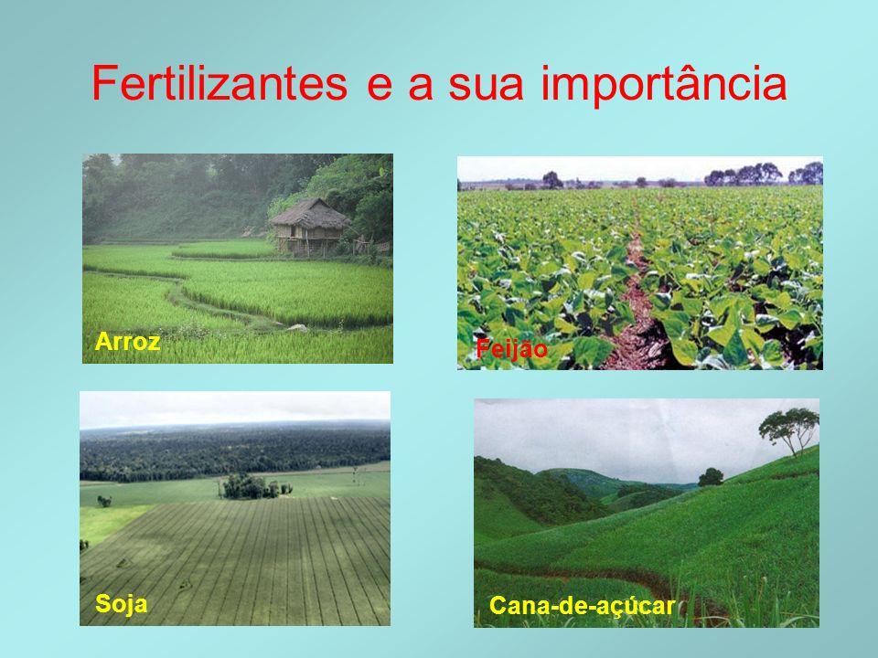 Fertilizantes e a sua importância Arroz Soja Cana-de-açúcar Feijão