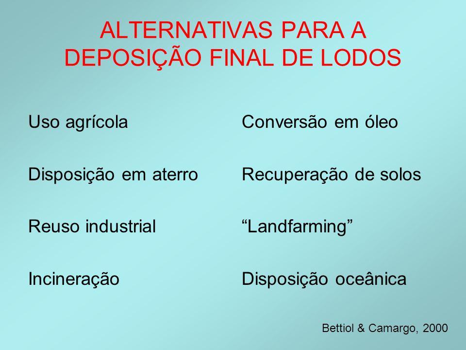 ALTERNATIVAS PARA A DEPOSIÇÃO FINAL DE LODOS Uso agrícola Disposição em aterro Reuso industrial Incineração Conversão em óleo Recuperação de solos Lan