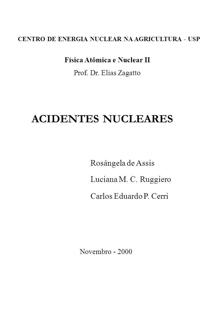 ACIDENTES NUCLEARES Rosângela de Assis Luciana M. C. Ruggiero Carlos Eduardo P. Cerri Física Atômica e Nuclear II Prof. Dr. Elias Zagatto CENTRO DE EN