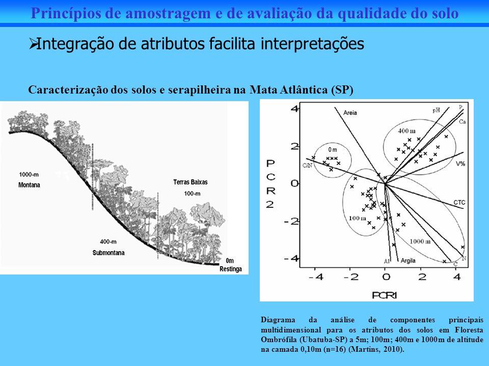 Integração de atributos facilita interpretações Caracterização dos solos e serapilheira na Mata Atlântica (SP) Princípios de amostragem e de avaliação