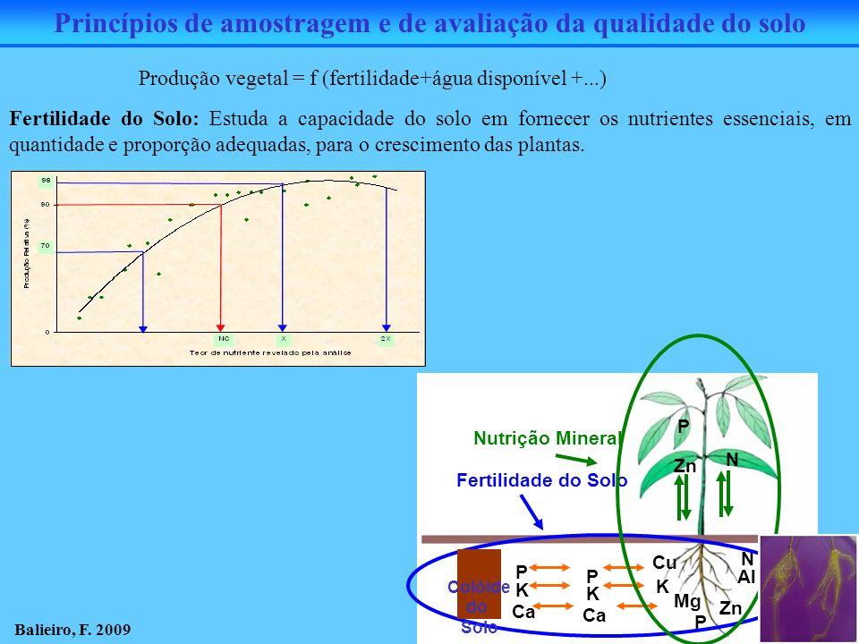 Fertilidade do Solo: Estuda a capacidade do solo em fornecer os nutrientes essenciais, em quantidade e proporção adequadas, para o crescimento das pla