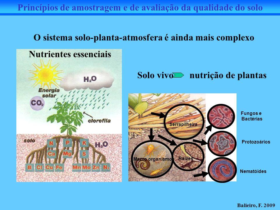 Fungos e Bactérias Protozoários Nematóides Raízes Macro organismos Serrapilheira O sistema solo-planta-atmosfera é ainda mais complexo Solo vivo nutri