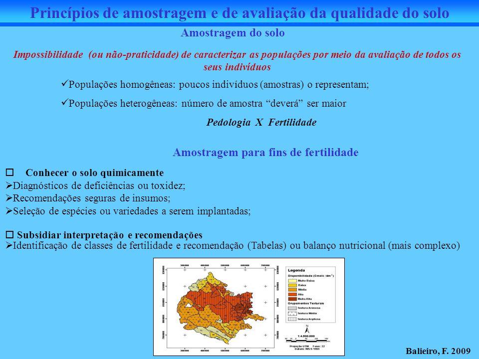 Amostragem do solo Impossibilidade (ou não-praticidade) de caracterizar as populações por meio da avaliação de todos os seus indivíduos Populações hom