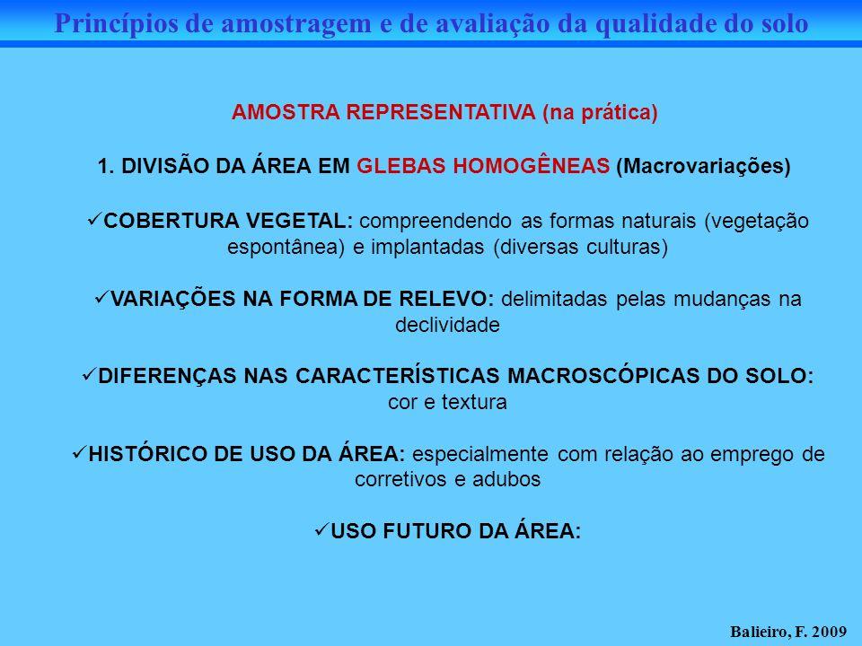 Princípios de amostragem e de avaliação da qualidade do solo AMOSTRA REPRESENTATIVA (na prática) 1. DIVISÃO DA ÁREA EM GLEBAS HOMOGÊNEAS (Macrovariaçõ