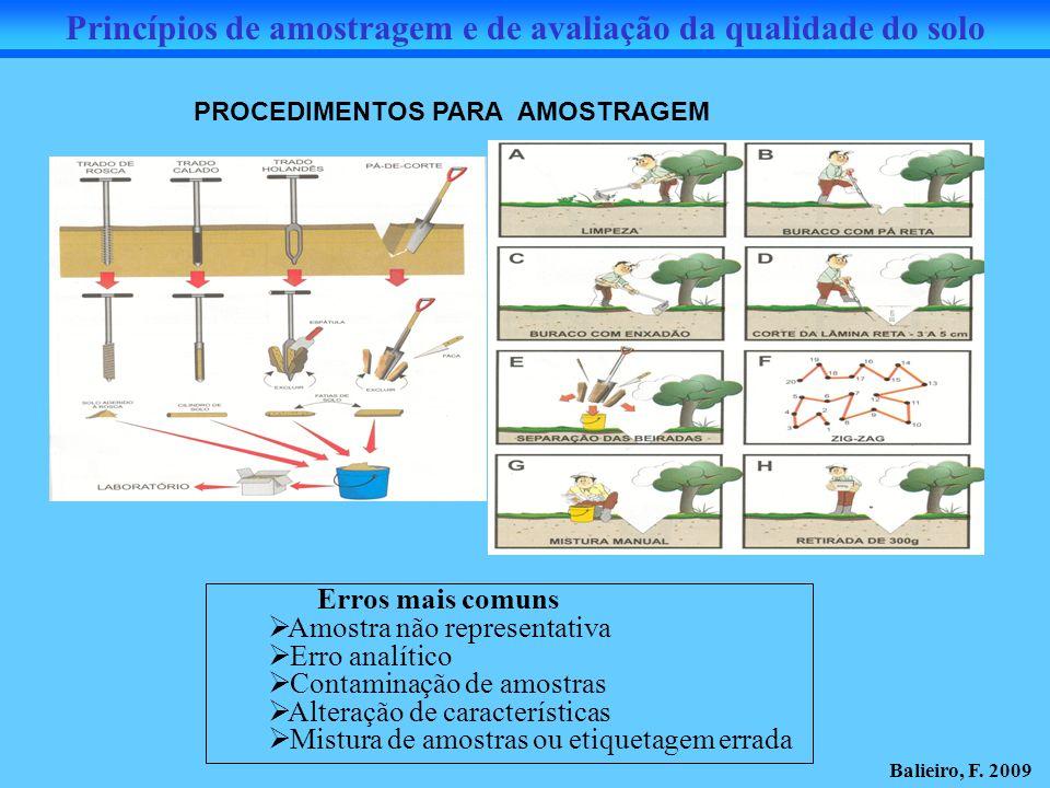 Princípios de amostragem e de avaliação da qualidade do solo PROCEDIMENTOS PARA AMOSTRAGEM Erros mais comuns Amostra não representativa Erro analítico