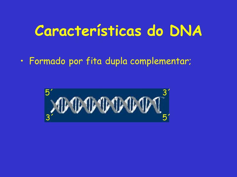 Características do DNA Formado por fita dupla complementar; 5´3´ 5´