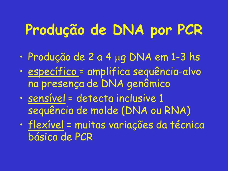 Produção de DNA por PCR Produção de 2 a 4 g DNA em 1-3 hs específico = amplifica sequência-alvo na presença de DNA genômico sensível = detecta inclusive 1 sequência de molde (DNA ou RNA) flexível = muitas variações da técnica básica de PCR