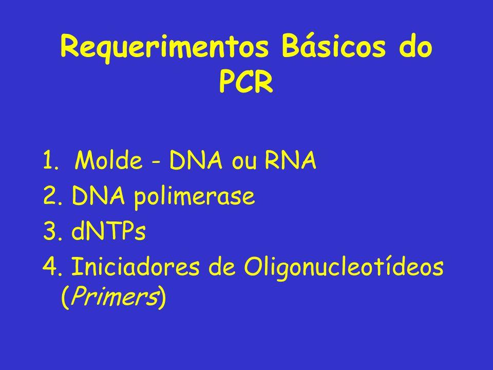 Requerimentos Básicos do PCR 1.Molde - DNA ou RNA 2.