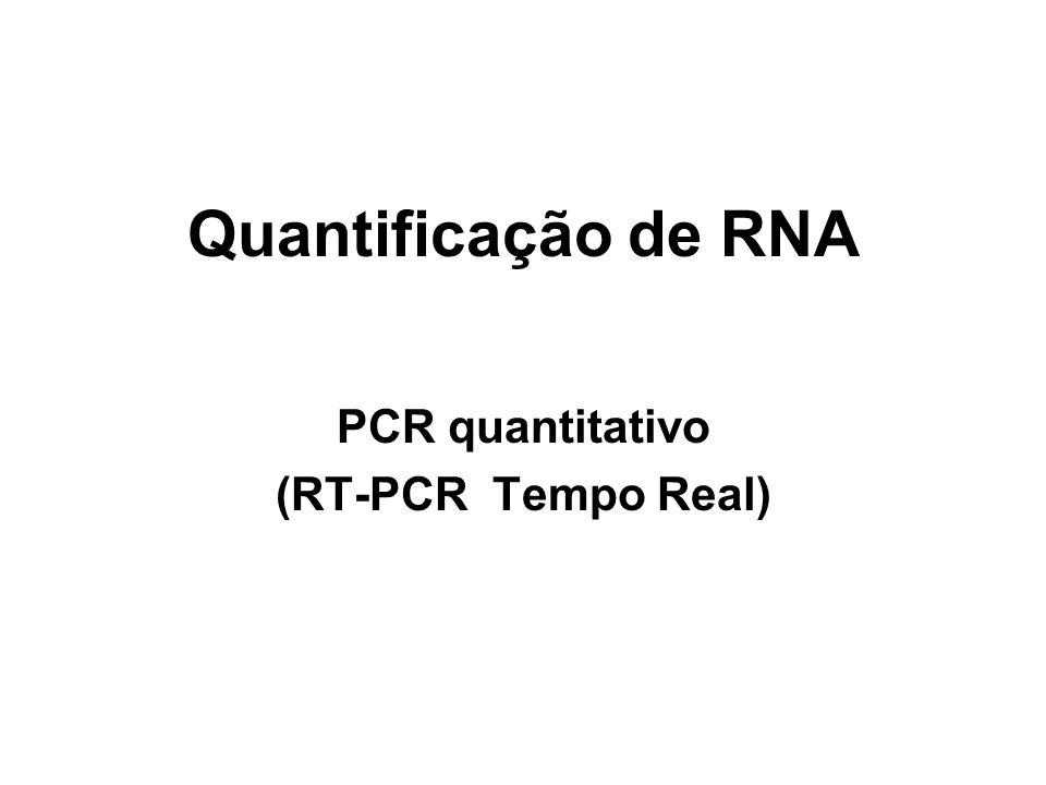 Quantificação de RNA PCR quantitativo (RT-PCR Tempo Real)