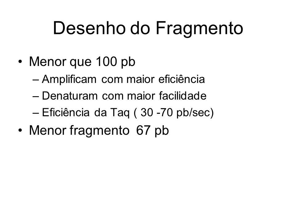 Desenho do Fragmento Menor que 100 pb –Amplificam com maior eficiência –Denaturam com maior facilidade –Eficiência da Taq ( 30 -70 pb/sec) Menor fragm