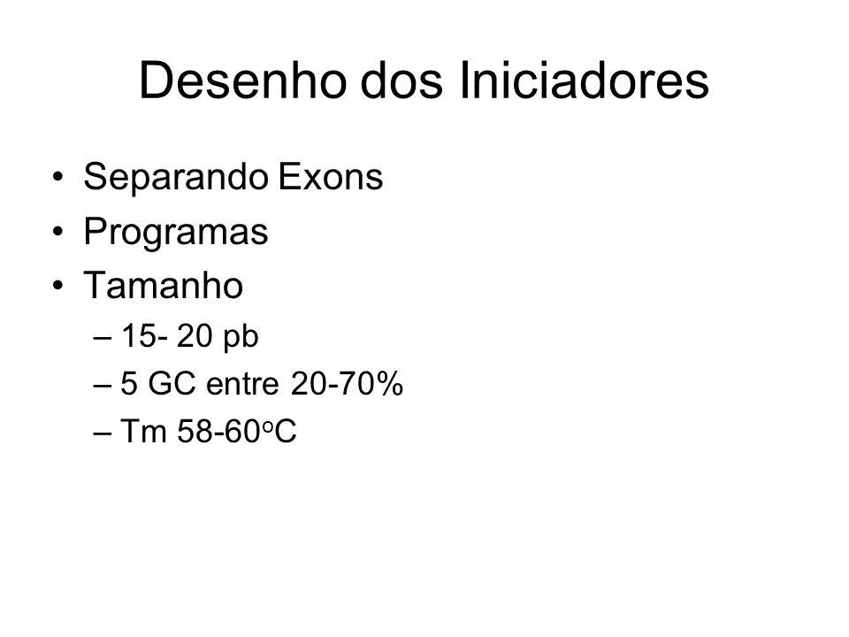 Desenho dos Iniciadores Separando Exons Programas Tamanho –15- 20 pb –5 GC entre 20-70% –Tm 58-60 o C
