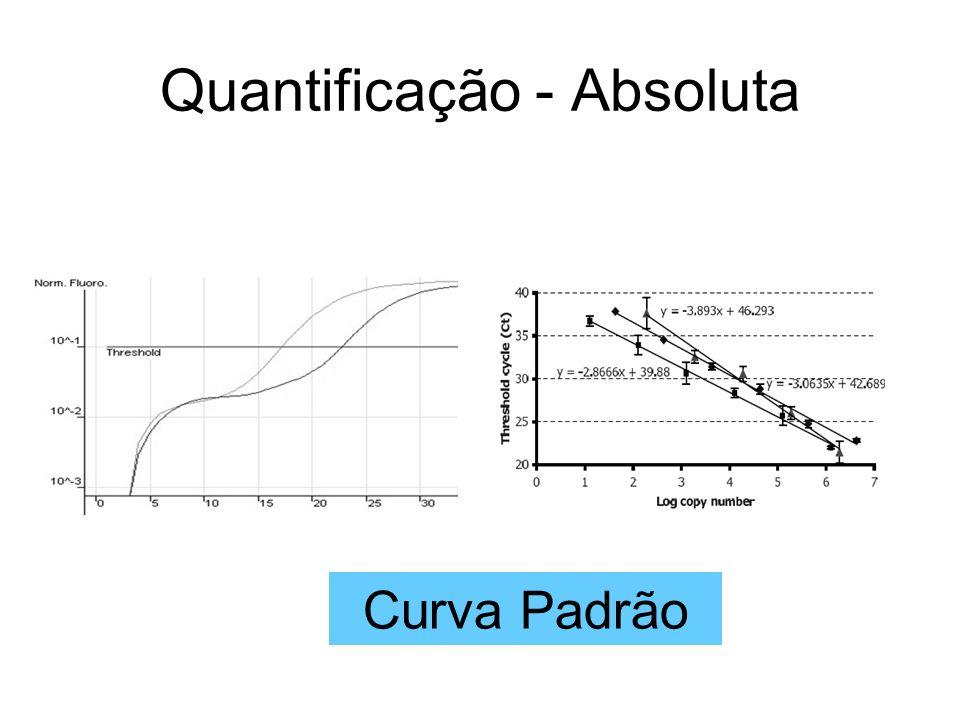 Quantificação - Absoluta Curva Padrão
