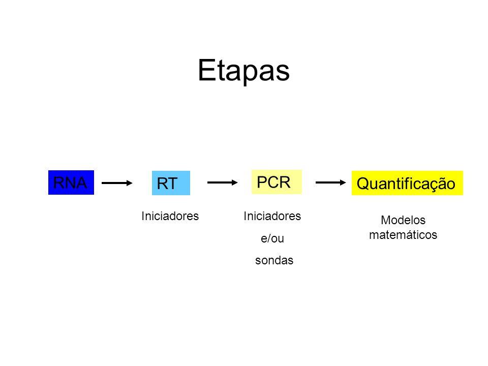 Etapas RNA RT PCR Quantificação Iniciadores e/ou sondas Modelos matemáticos