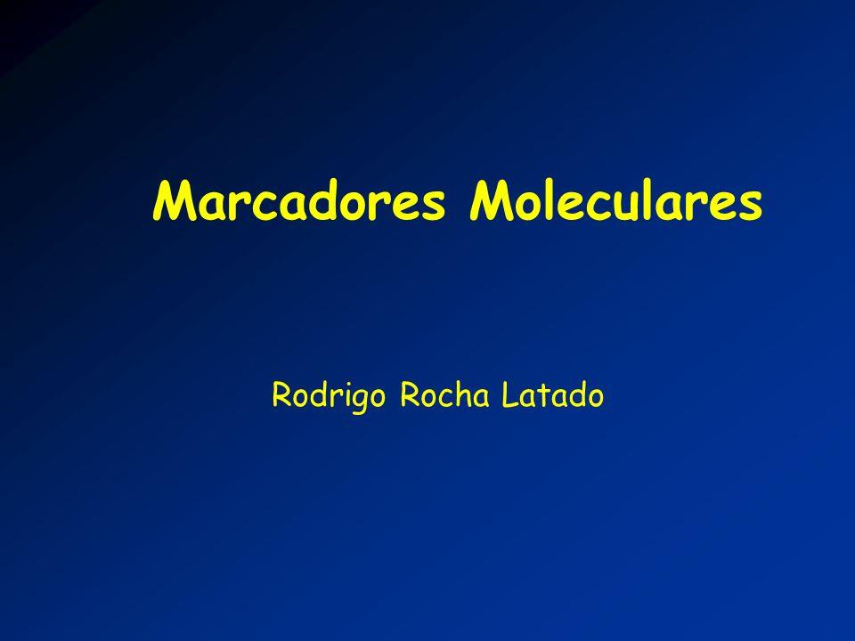 Marcadores Moleculares Rodrigo Rocha Latado