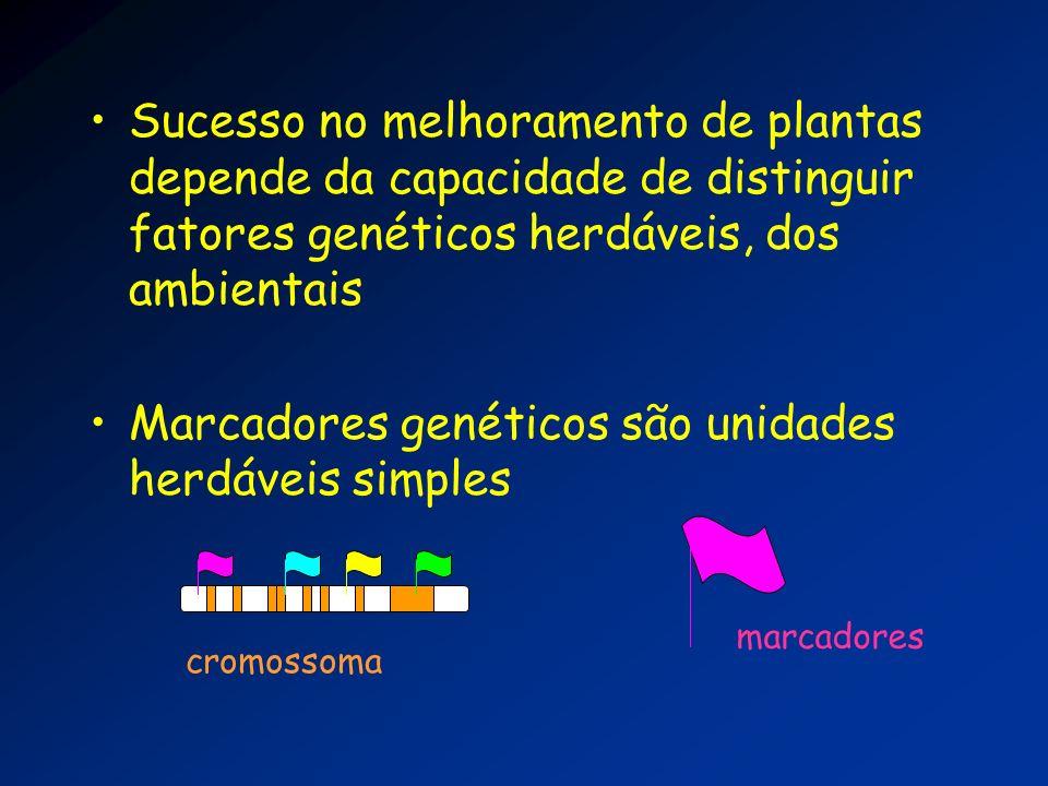 Sucesso no melhoramento de plantas depende da capacidade de distinguir fatores genéticos herdáveis, dos ambientais Marcadores genéticos são unidades h