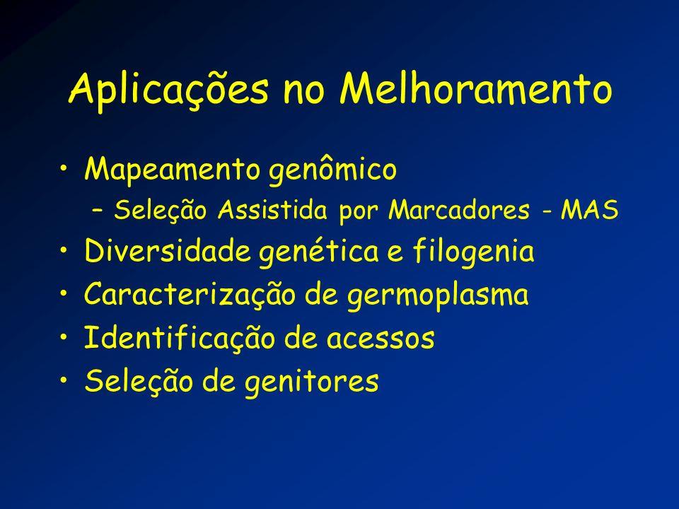 Aplicações no Melhoramento Mapeamento genômico –Seleção Assistida por Marcadores - MAS Diversidade genética e filogenia Caracterização de germoplasma