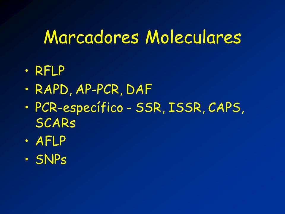 Marcadores Moleculares RFLP RAPD, AP-PCR, DAF PCR-específico - SSR, ISSR, CAPS, SCARs AFLP SNPs