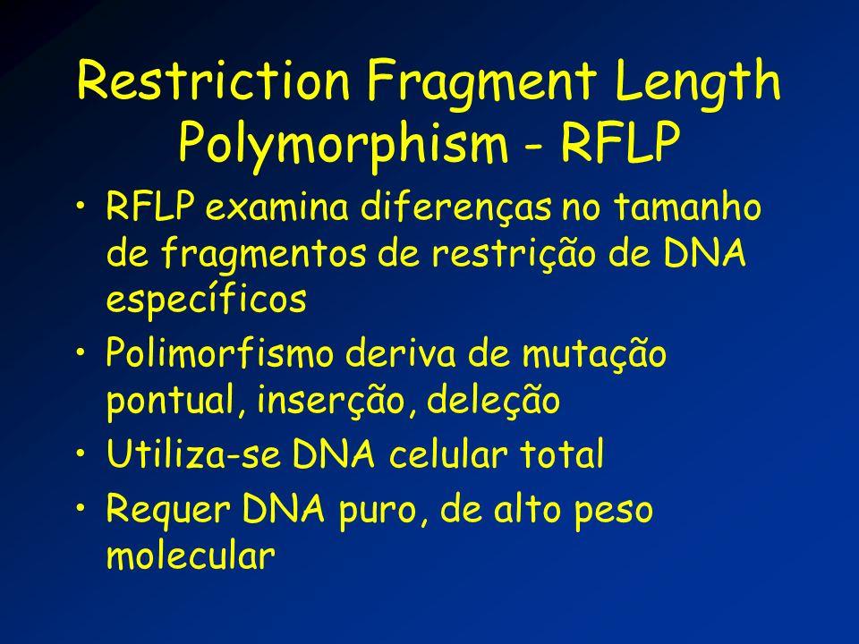 Restriction Fragment Length Polymorphism - RFLP RFLP examina diferenças no tamanho de fragmentos de restrição de DNA específicos Polimorfismo deriva d