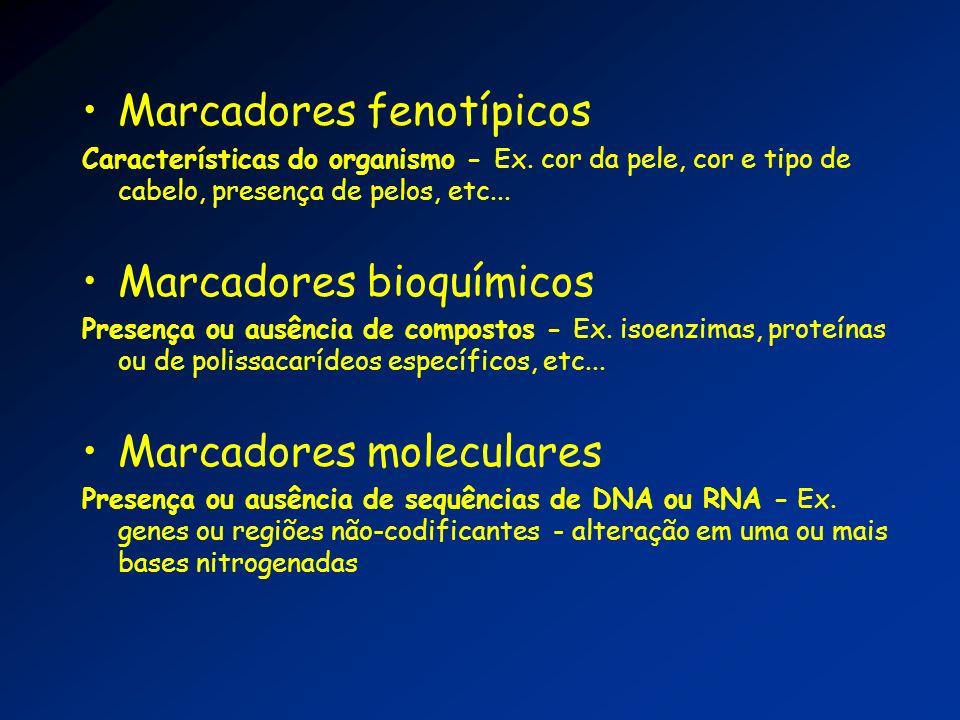 Marcadores fenotípicos Características do organismo - Ex. cor da pele, cor e tipo de cabelo, presença de pelos, etc... Marcadores bioquímicos Presença