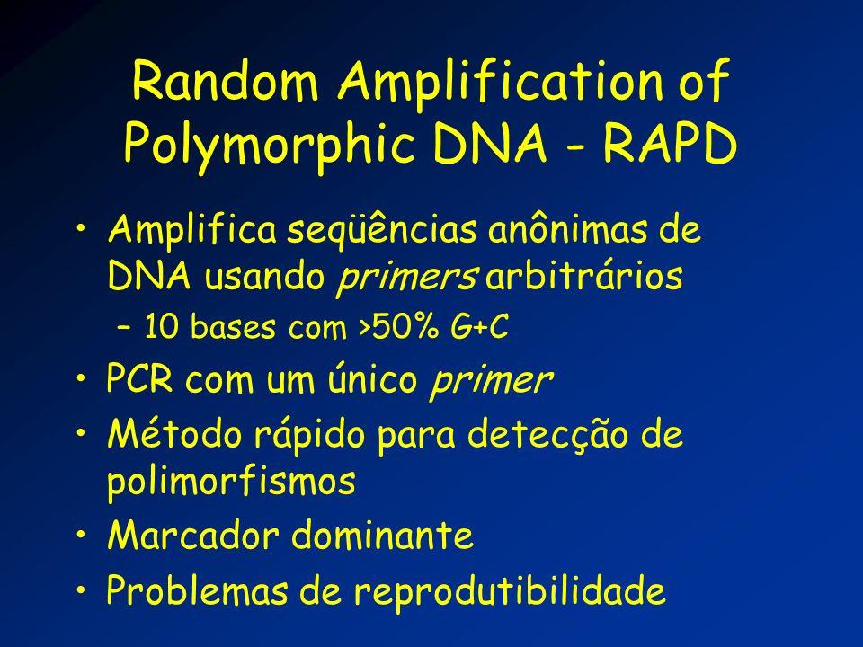 Random Amplification of Polymorphic DNA - RAPD Amplifica seqüências anônimas de DNA usando primers arbitrários –10 bases com >50% G+C PCR com um único