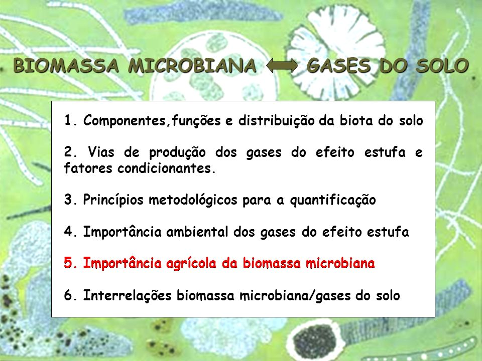 BIOMASSA MICROBIANA Efeitos do ambiente, solo, práticas agrícolas e aditivos Reservatório de nutrientes e taxa de mineralização Degradação de pesticidas Indicador da qualidade do solo