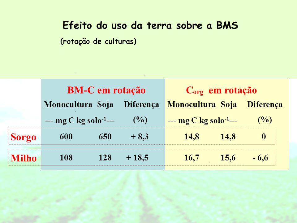 BM-C em rotação MonoculturaSojaDiferença (%) C org em rotação (%) MonoculturaSojaDiferença --- mg C kg solo -1 --- Sorgo 600650+ 8,314,8 0 Milho 10812