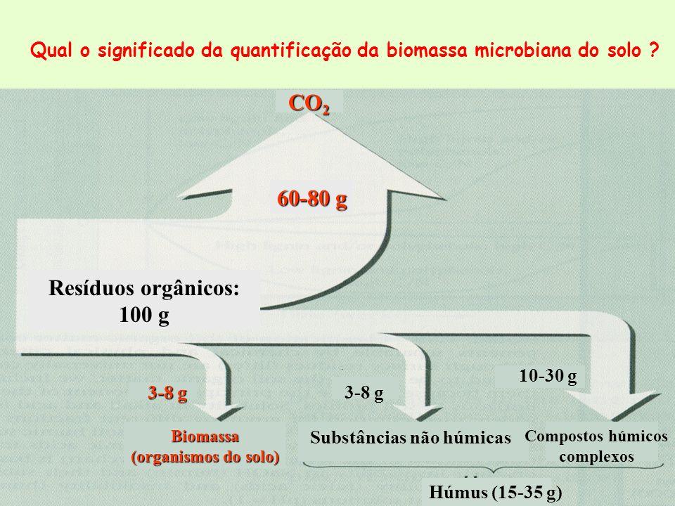 Qual o significado da quantificação da biomassa microbiana do solo ? Resíduos orgânicos: 100 g 60-80 g CO 2 Biomassa (organismos do solo) Substâncias